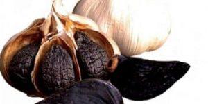 preparación del ajo negro